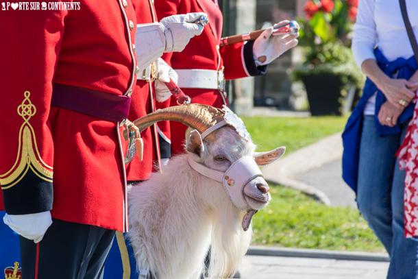 La relève de la garde…à Québec !