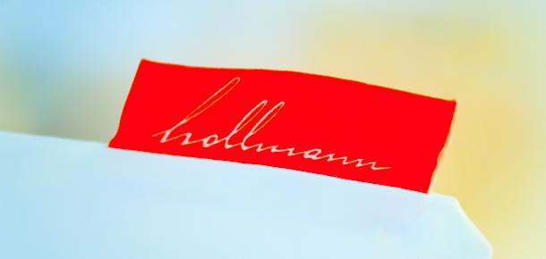 Hollmann Beletage, Vienne