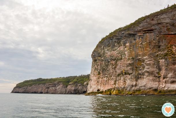 L'île Bonaventure