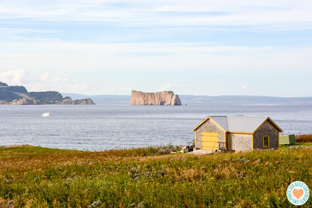 Île Bonaventure: les sentiers