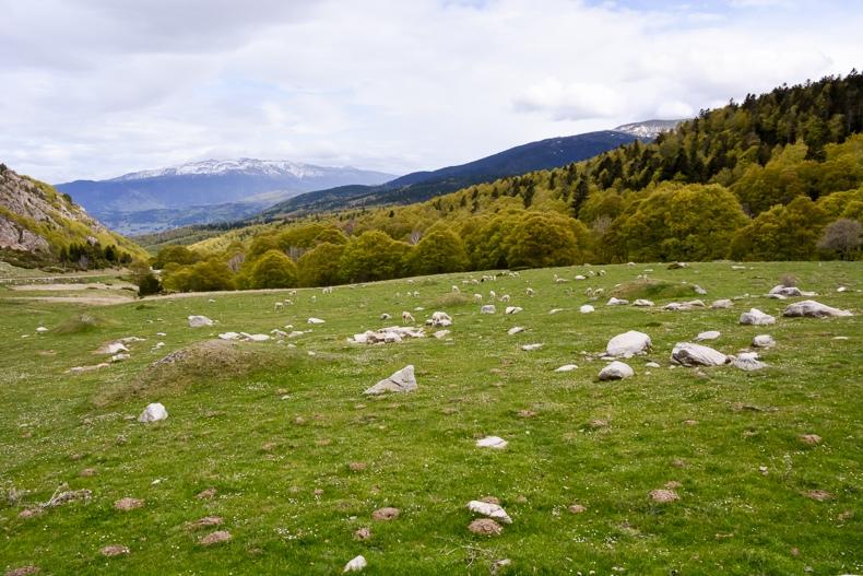 Col de Pailhères