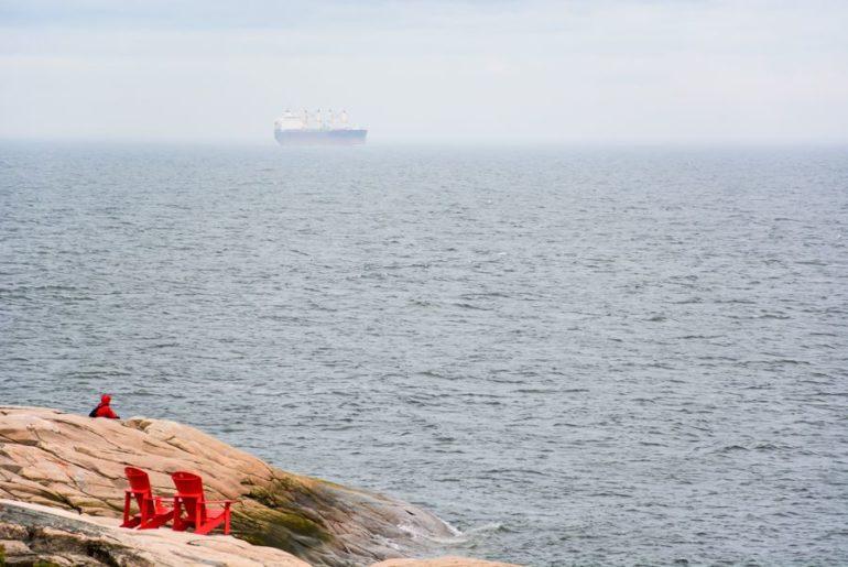 Observation terrestre baleines