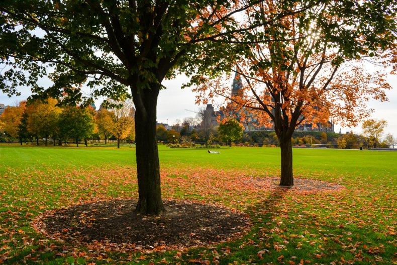 Le Parc Major's Hill