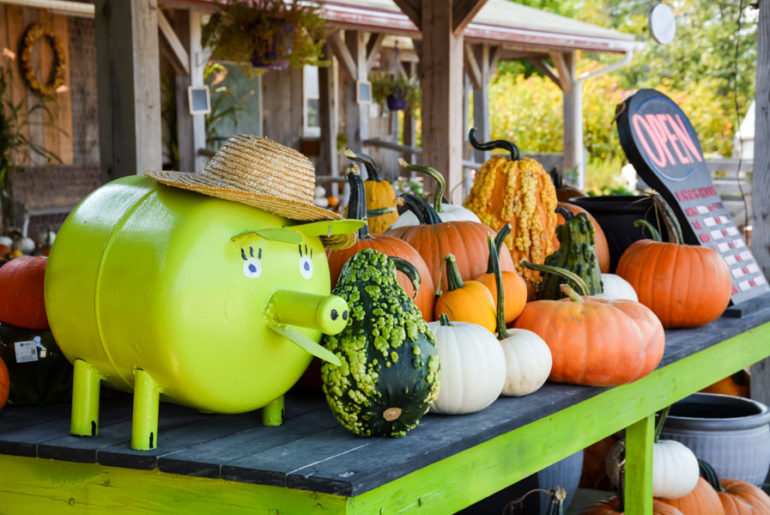 Green Pig Market