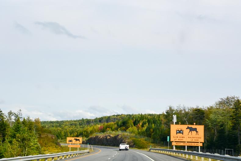 Route panoramique de la vallée