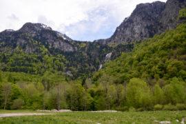 Bain de forêt au sentier des cascades d'Orlu en Ariège